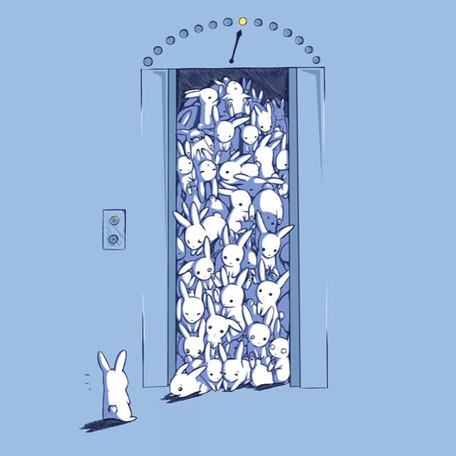 elevator bunnies